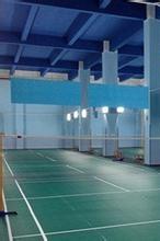 6.26周五晚八点园区东富球馆羽毛球活动