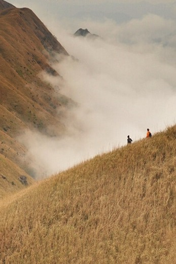惠州大南山穿越、遍地金色芦苇荡、云端漫步斧头石