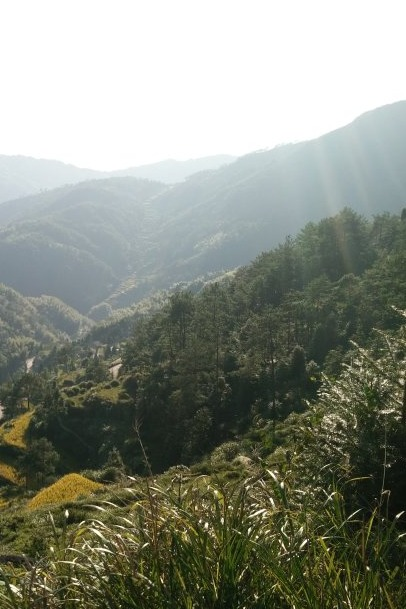 (10.27周四)骑行龙井风景区—难度★★★★☆