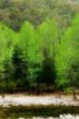 2015年9月20日蓝田玉山蓝河风景区一日游