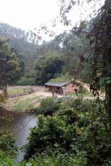 7月3日星期天,高峰村林徒步,AA制活动