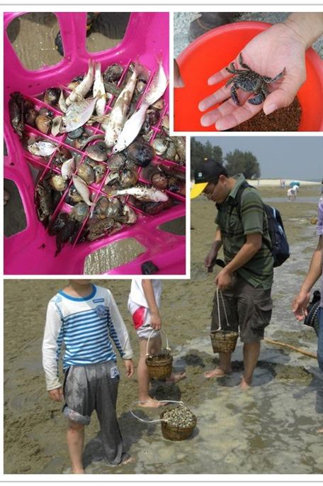 【国庆活动】 北海钓鱼?岛2日户外休闲游【纯玩交友】