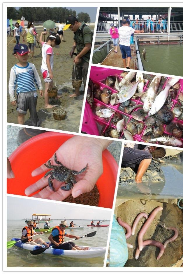 【国庆活动】 北海钓鱼?岛2日户外休闲游【吃海鲜】