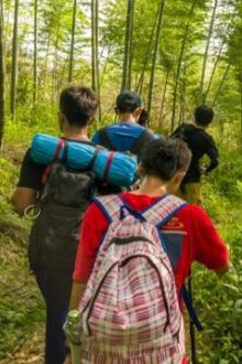 本周活动:3月27影溪徒步摄影枫林