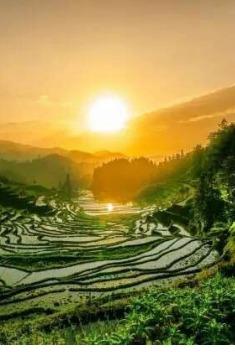 稻麦黄 秋收忙【最后一期】紫鹊界梯田露营烧烤两日行