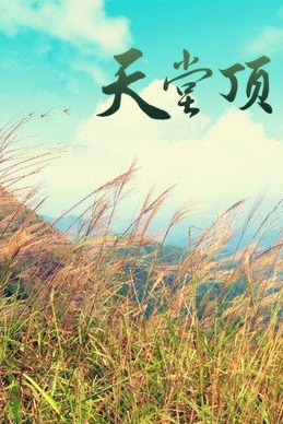 周末广州第一峰天堂顶(1228米)一日旅