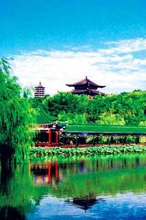 苏州—杭州一日游  西湖游船+花港观鱼+西溪湿地