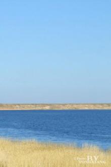 海边一日游