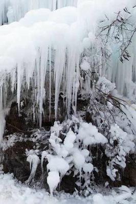 """【野蘑菇】 12月24日 周六 -满城""""龙居冰瀑布"""