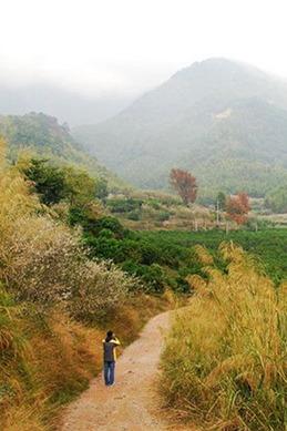 影古线徒步,逛溪头古巷,穿越竹林一天户外活动