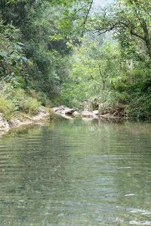 七里冲峡谷戏水