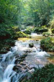 10月9号,西赛国森林公园一日游