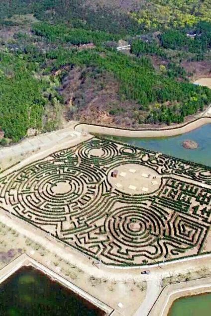 中国最大的植物迷宫亲子寻宝拓展