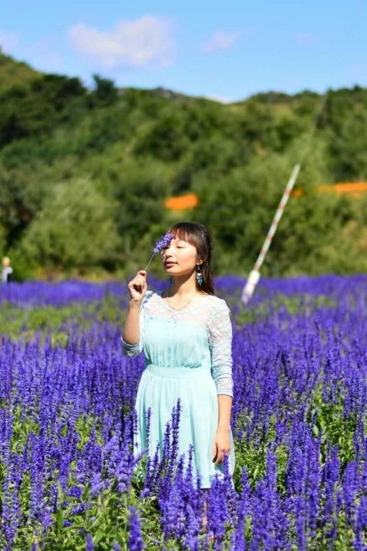 野蘑菇8.28周日四季花海 永宁古城一日游
