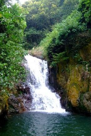 8月1号畅游肇庆文殊村溯溪玩水观原始森林