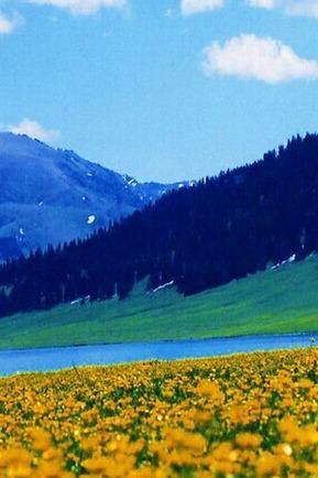 赛里木湖一日游
