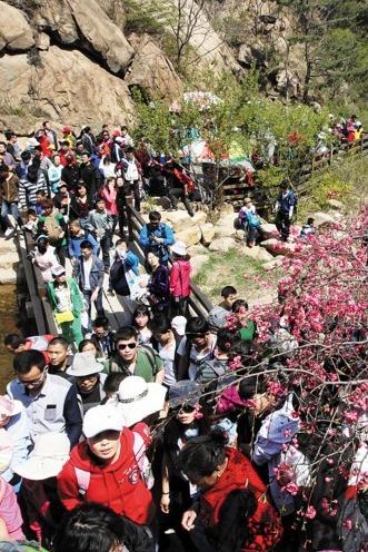 盘锦户外爱情俱乐部4月26日举办大型户外赏花相亲一日游