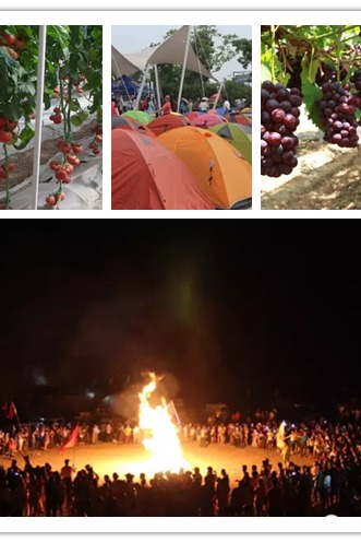 沙雕帐篷节 葡萄采摘盛夏清凉二日游288买一送一