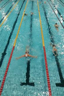 成都游泳村5月20日游泳活动