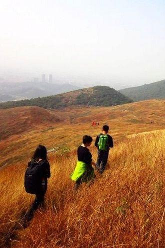 10月23日 黄石小武功山 、越黄荆山赏高山草甸
