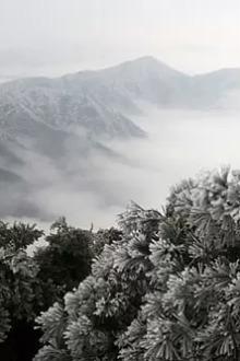 南岳天柱峰醉美雾凇