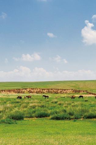 自然仙境、自在享受、聆听心声,草原沙漠三日行~~