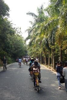 2月22日番禺大夫山森林公园踩单车