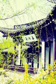 6.08-12日 江南(苏杭)三日深度游