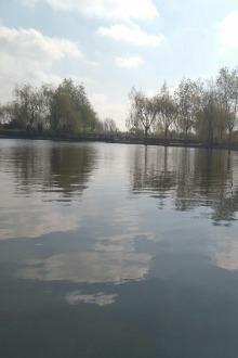 呼兰河口湿地烧烤聚餐