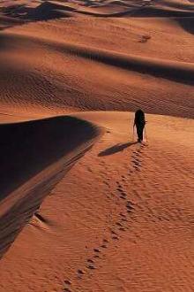 迈步向前,沙漠徒步之旅