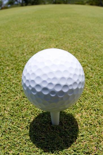 10月17日周一名仕会高尔夫体验活动(跟帖报名)