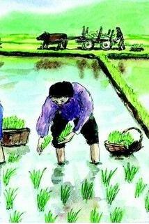 亲子农耕体验之插秧活动