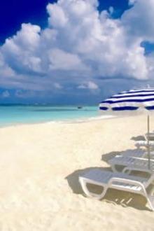 海滩夏日情