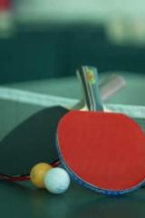 乒乓球(以球会友)文化宫球馆每天下午有约