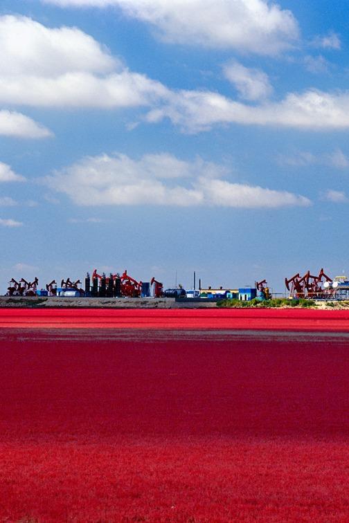 中秋节9月15-17号 红海滩 笔架山