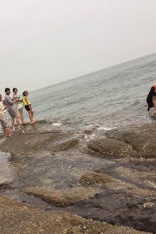 山东日照金沙滩赶海踏浪两日游