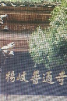 3月29杨岐普通寺一日游