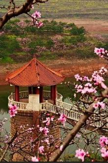 【3.26】春天到了让我们一起徒步梅湾湖赏桃花