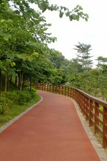 旗峰—虎英绿道徒步活动通知