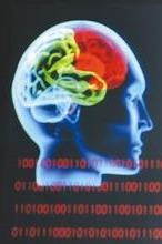 亲子体验0903《快速记忆-你的大脑做得到》