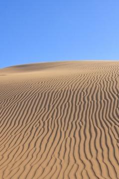 9.2-5日库布齐沙漠穿越体验抗战胜时期的艰辛