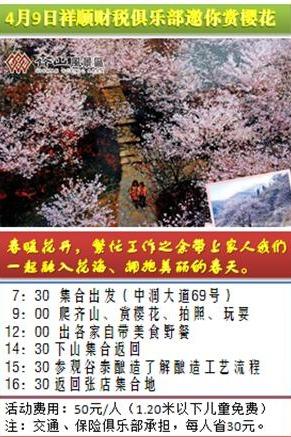 4月9日祥顺财税俱乐部齐山赏樱花50元