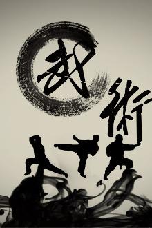 沧州最全武术交流(QQ群106729332)