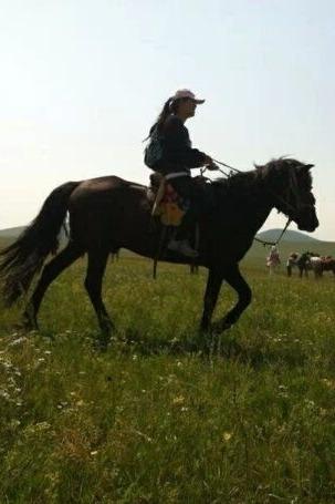 同样的季节,不一样的草原,8月草原之旅