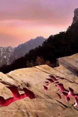 龟蒙山之约