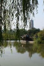 兴化、扬州看千岛万亩油菜花游扬州瘦西湖