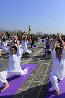 免费练瑜伽,迎6月21日首个国际瑜伽日