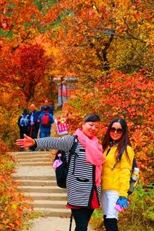 10月16日徒步甘肃兴隆山.赏满山枫树红叶