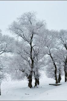 东升雪乡穿越户外活动