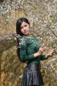 3月26日踏春赏花走进广州百万葵园漫步花的海洋
